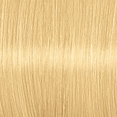 Color Expert Intensiv-Plege Color Creme 12-0 Eisblond