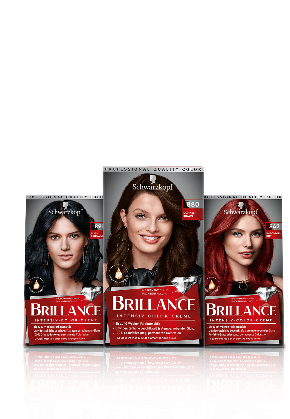 brillance_de_pack_overlay_970x140_1